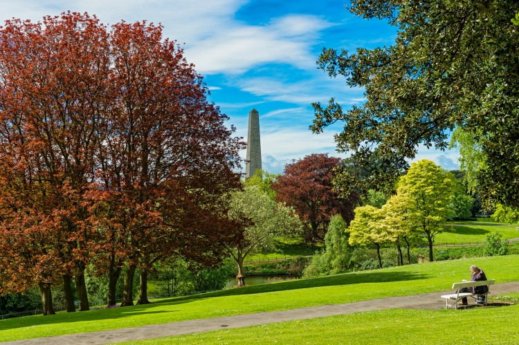 Best-Things-to-Do-with-Kids-in-Dublin-8a84784048dc4c0a95bed75cf558b21c